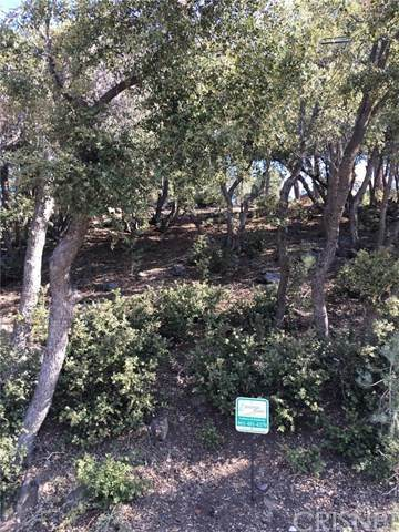 1708 Zermatt Drive, Pine Mountain Club, CA 90302 (#SR20213097) :: Zutila, Inc.