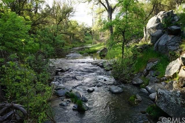 3366 Indian Peak Road, Mariposa, CA 95338 (#FR20214648) :: Blake Cory Home Selling Team