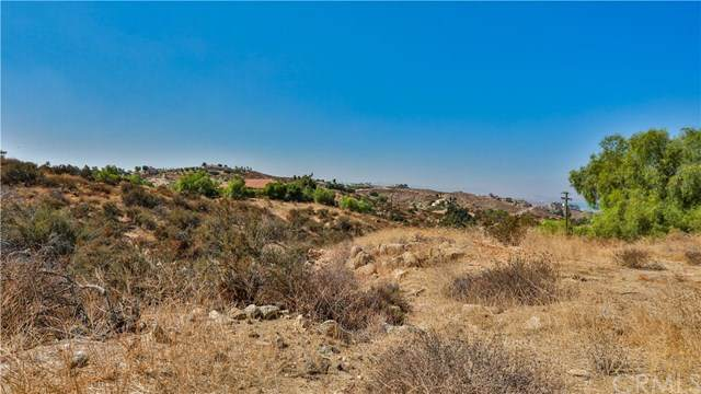 0 Park Hill Drive, Perris, CA 92599 (#PW20214817) :: Realty ONE Group Empire
