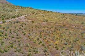 160 Rosamond, Willow Springs, CA 93560 (#PW20215487) :: Zutila, Inc.