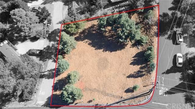 2029 St Bernard Drive, Pine Mountain Club, CA 93222 (#SR20216796) :: The Miller Group