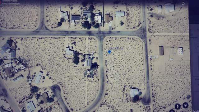 San Pablo Rd, Borrego Springs, CA 92004 (#NDP2001350) :: eXp Realty of California Inc.