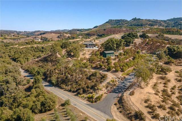 40505 Sandia Creek Drive, Fallbrook, CA 92028 (#SW20217155) :: TeamRobinson | RE/MAX One