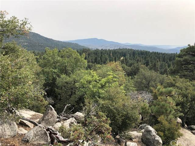 0 Knob Hill, Idyllwild, CA 92549 (#JT20218359) :: eXp Realty of California Inc.