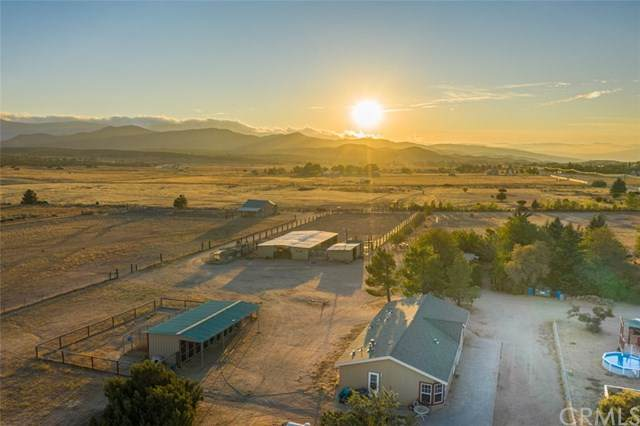 37825 Montezuma Valley Road, Ranchita, CA 92066 (#ND20218468) :: The Costantino Group | Cal American Homes and Realty