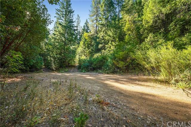 11555 State Hwy 175, Loch Lomond, CA 95461 (#LC20218588) :: Steele Canyon Realty
