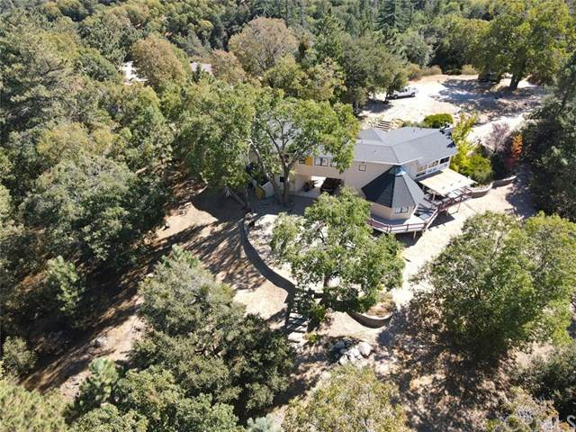 531 N Dart Canyon Road, Crestline, CA 92325 (#EV20218976) :: The Results Group