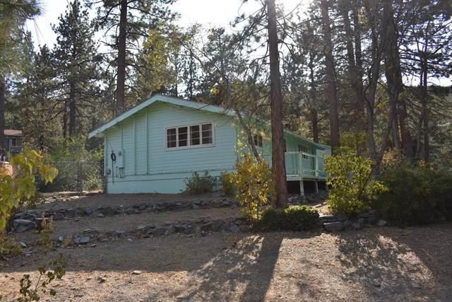 531 Mountain View Avenue, Wrightwood, CA 92397 (#529109) :: Zutila, Inc.