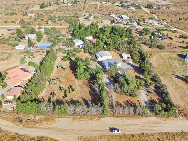 8979 Lager Road, Phelan, CA 92371 (#WS20219289) :: The Results Group