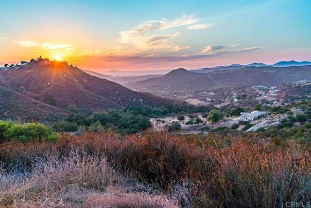 0 Peutz Valley Road, Alpine, CA 91901 (#NDP2001450) :: eXp Realty of California Inc.