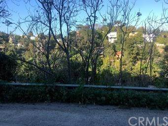 424 Quail Drive, Mount Washington, CA 90065 (#CV20219471) :: eXp Realty of California Inc.