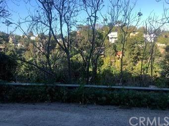 434 Quail, Mount Washington, CA 90065 (#CV20219472) :: RE/MAX Empire Properties