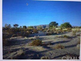 73200 Two Mile Road - Photo 1