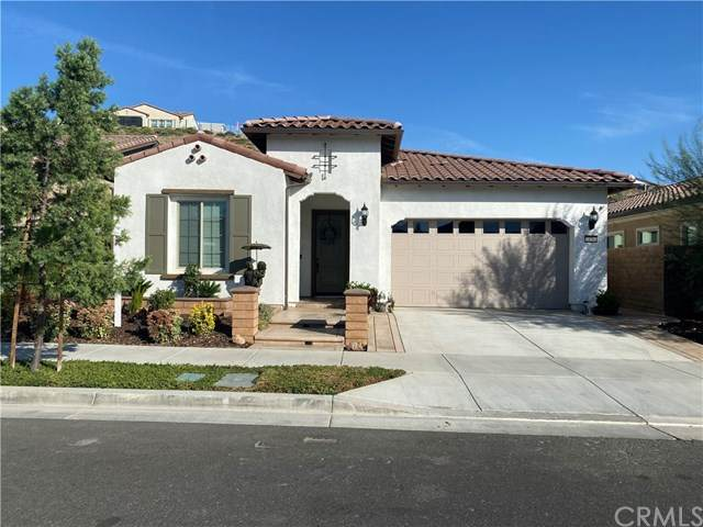24368 Overlook Drive, Corona, CA 92883 (#PW20220654) :: TeamRobinson | RE/MAX One