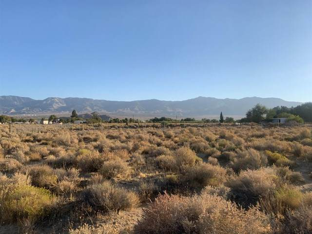 0 Kendell Road, Lucerne Valley, CA 92356 (#529072) :: RE/MAX Empire Properties