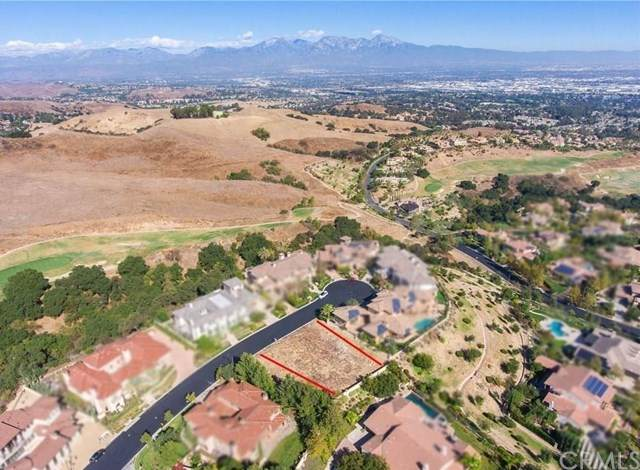 16309 Domani Terrace, Chino Hills, CA 91709 (#TR20220683) :: Mark Nazzal Real Estate Group