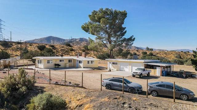 401 Rockyford Road, Palmdale, CA 93550 (#BB20144332) :: Team Forss Realty Group