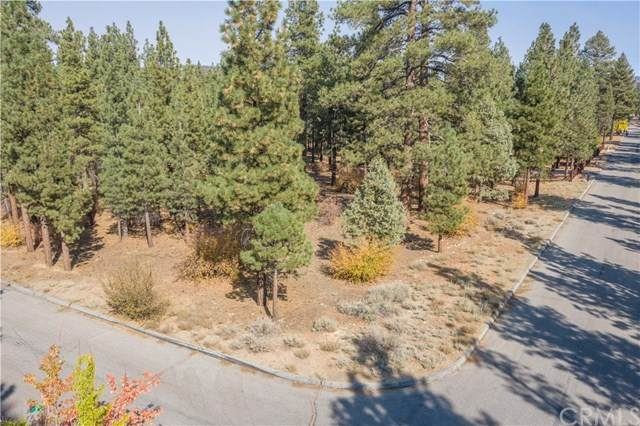 1865 Shady Lane, Big Bear, CA 92314 (#PW20221694) :: Zutila, Inc.