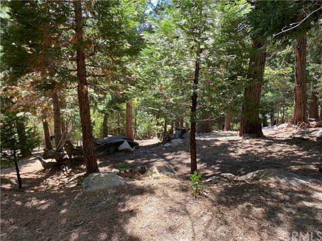 0 Old City Creek Road, Running Springs, CA 92382 (#EV20221958) :: TeamRobinson | RE/MAX One