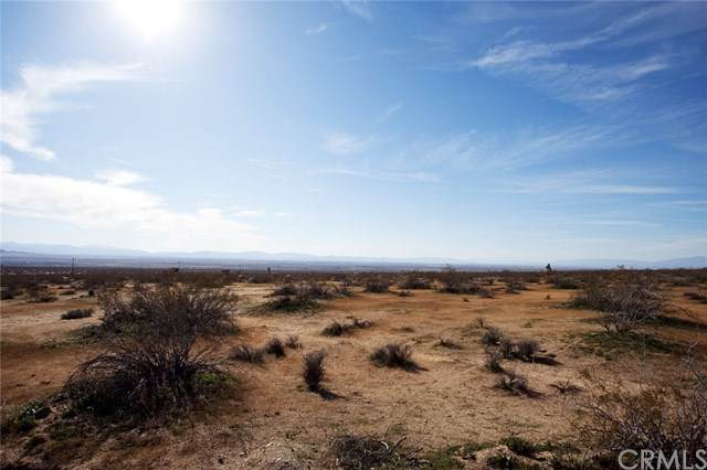 0 160th Street East, Redman, CA 93535 (#OC20222196) :: eXp Realty of California Inc.