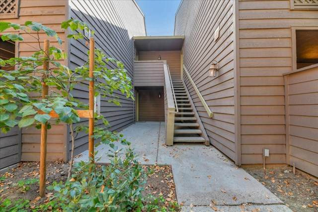 854 Catkin Court, San Jose, CA 95128 (#ML81816638) :: Powerhouse Real Estate