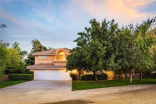 4656 Scarlet Court, Palmdale, CA 93551 (#SR20217750) :: Team Forss Realty Group