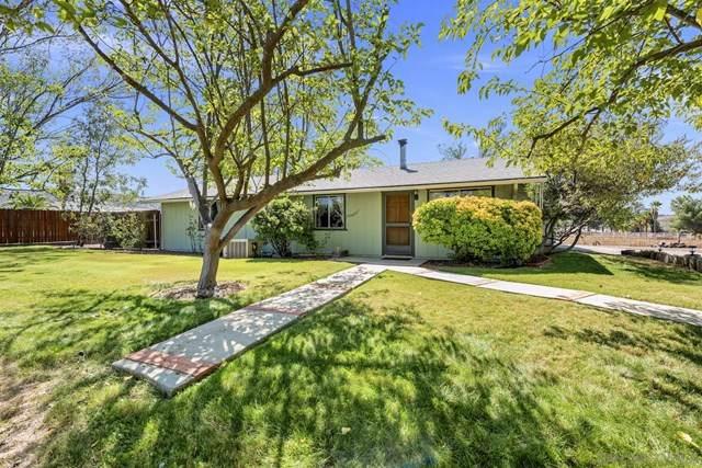620 Hanson Ln, Ramona, CA 92065 (#200049282) :: Z Team OC Real Estate
