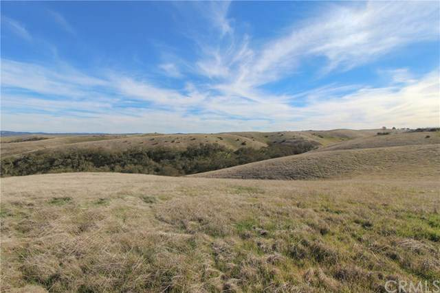 0 Straw Ridge Road, Paso Robles, CA 93446 (#NS20215209) :: American Real Estate List & Sell