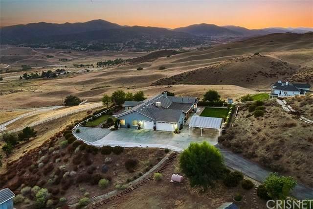 40330 75th Street W, Leona Valley, CA 93551 (#SR20223021) :: Powerhouse Real Estate