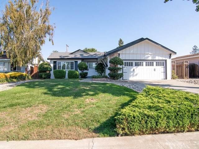 1338 Piland Drive, San Jose, CA 95130 (#ML81816870) :: Team Tami
