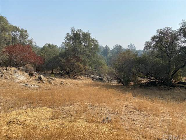 9 Silver Bar, Mariposa, CA 95338 (#MP20223366) :: Twiss Realty
