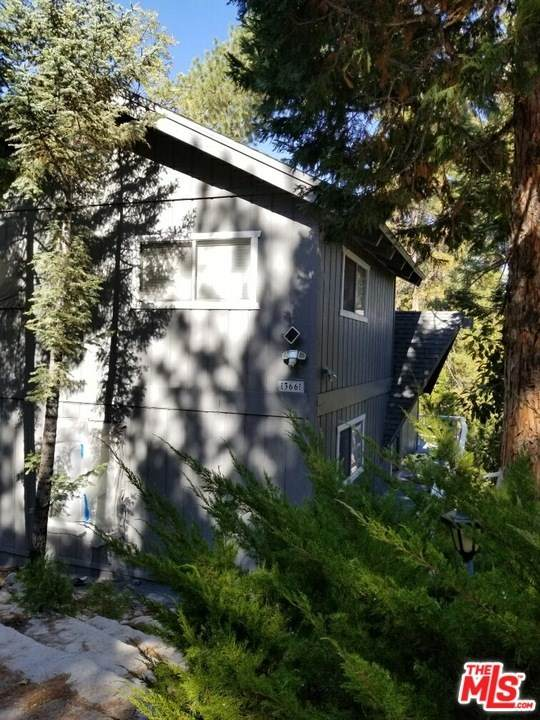 366 Birchwood Drive, Lake Arrowhead, CA 92352 (#20649940) :: TeamRobinson | RE/MAX One