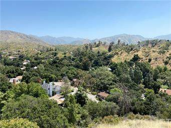 0 Veranda, Kagel Canyon, CA 91342 (#SR20223617) :: Zutila, Inc.