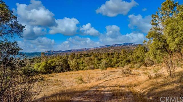 Coarsegold, CA 93614 :: A|G Amaya Group Real Estate
