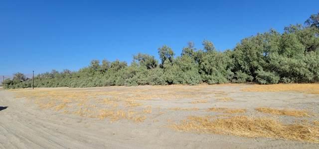 0 Circle B Dr Drive, Desert Hot Springs, CA 92241 (#219051827DA) :: RE/MAX Empire Properties