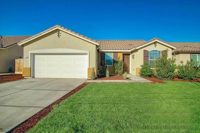 229 Rose Avenue, Los Banos, CA 93635 (#ML81817019) :: Steele Canyon Realty
