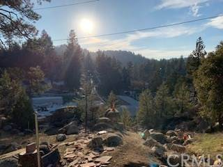 0 Fern Drive, Arrowbear, CA 92382 (#OC20224197) :: eXp Realty of California Inc.