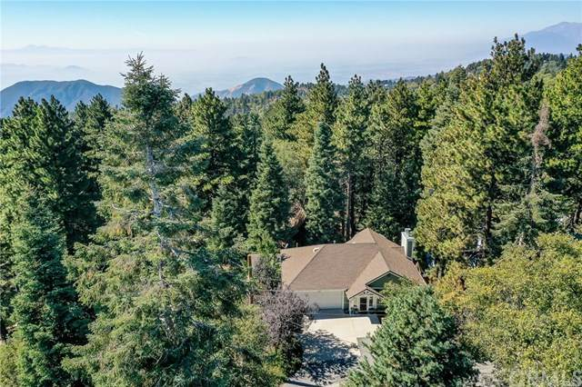 31423 Panorama Drive, Running Springs, CA 92382 (#EV20223869) :: eXp Realty of California Inc.