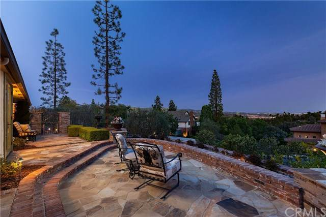 11041 Gold Star Lane, North Tustin, CA 92705 (#NP20223911) :: The Results Group