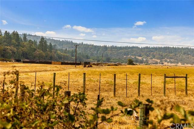 15007 Spruce Grove Road, Lower Lake, CA 95457 (#LC20224501) :: Team Forss Realty Group