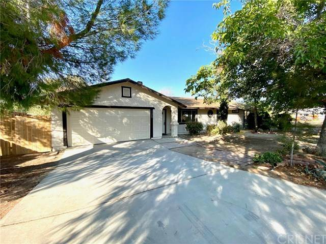 17269 Parkvalley Avenue, Palmdale, CA 93591 (#SR20224594) :: eXp Realty of California Inc.