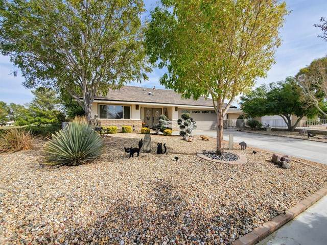 27475 Lakeview Drive, Helendale, CA 92342 (#529442) :: The Brad Korb Real Estate Group