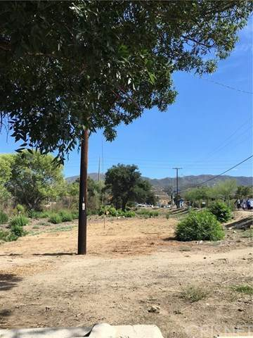 20445 Newhall Avenue, Newhall, CA 91321 (#SR20224882) :: Frank Kenny Real Estate Team