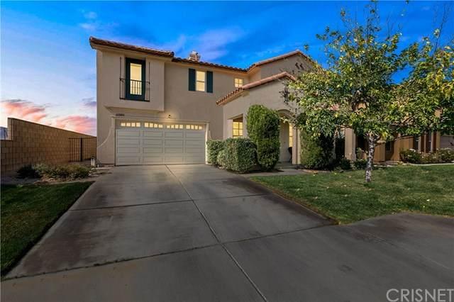 43101 Elena Street, Lancaster, CA 93536 (#SR20225048) :: Z Team OC Real Estate