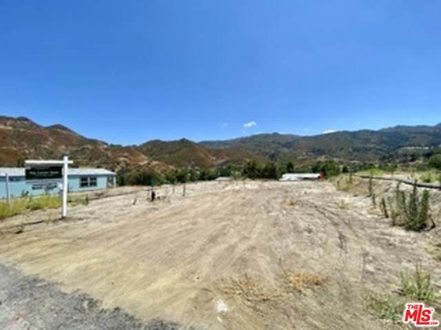 30473 Mulholland Highway, Agoura Hills, CA 91301 (#20651452) :: EXIT Alliance Realty