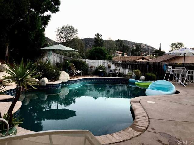 9405 Brian Way, El Cajon, CA 92021 (#PTP2000988) :: Brandon Hobbs Group