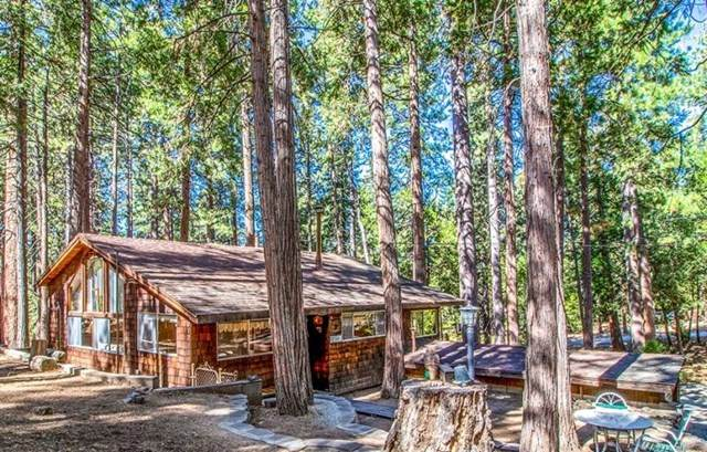 27401 Saunders Meadow, Idyllwild, CA 92549 (#219051974DA) :: Team Foote at Compass