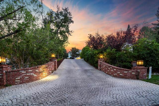 29040 Wagon Road, Agoura Hills, CA 91301 (#220010630) :: Realty ONE Group Empire
