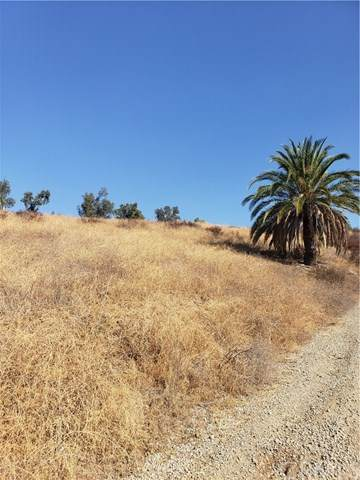 56 Lakeview Ave, Lake Elsinore, CA 92530 (#SW20224203) :: TeamRobinson | RE/MAX One