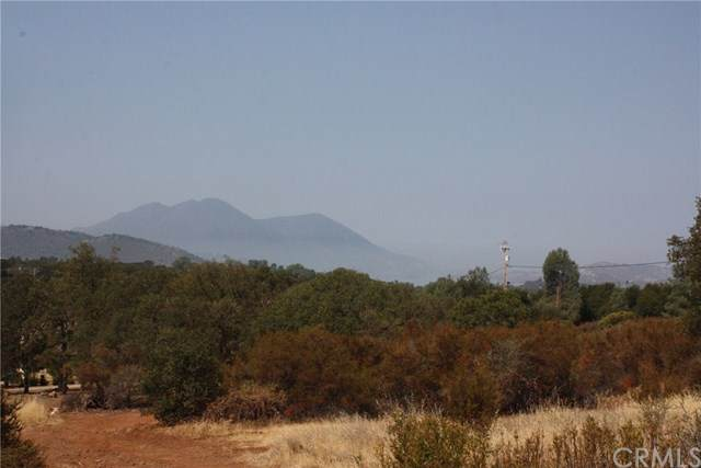 16384 18th Avenue, Clearlake, CA 95422 (#LC20225903) :: The Miller Group